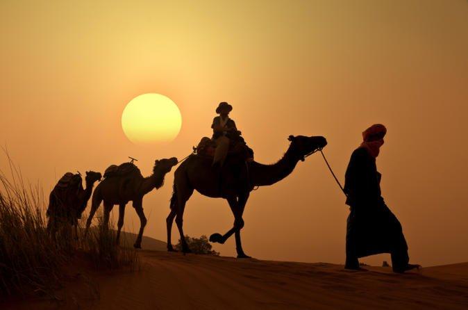 paseo en camello en el palmeral marrakech